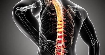 dolore vertebrale